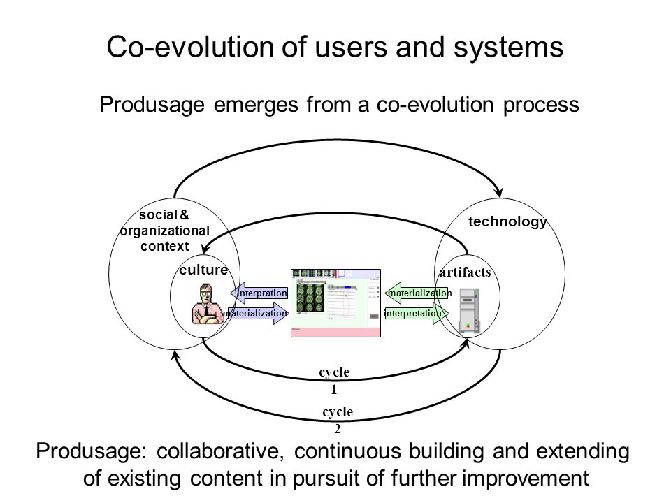 Co-evolution of users and systems