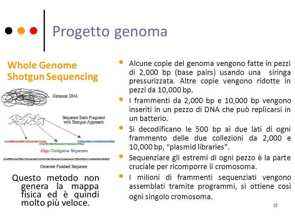Progetto genoma Whole Genome Shotgun Sequencing
