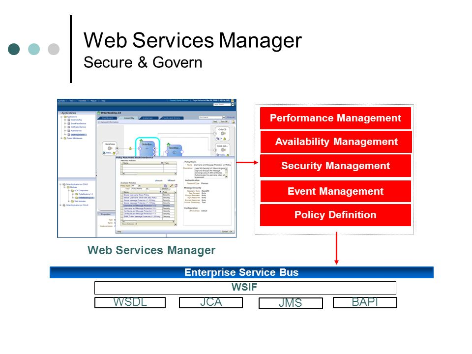 Web Services Manager Secure & Govern