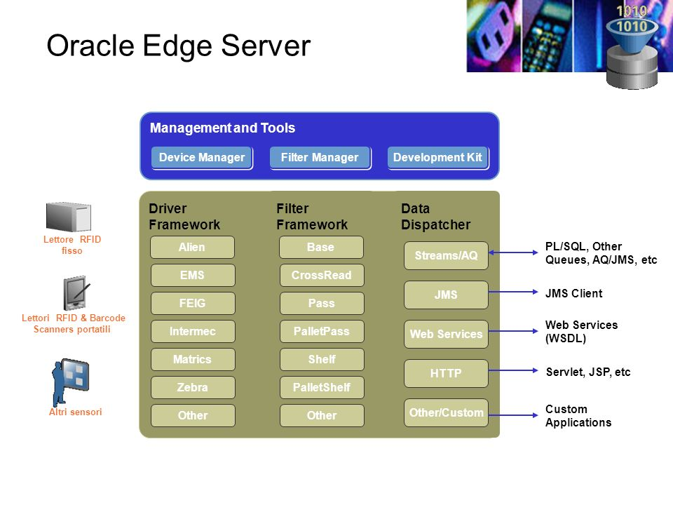 Oracle Edge Server Management and Tools Driver Framework Filter