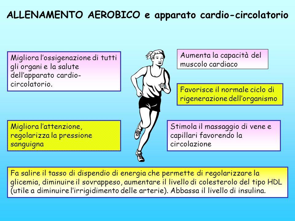 ALLENAMENTO AEROBICO e apparato cardio-circolatorio