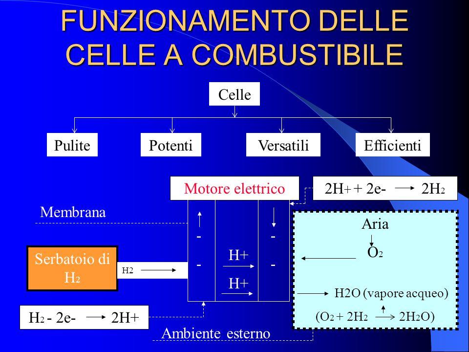 FUNZIONAMENTO DELLE CELLE A COMBUSTIBILE