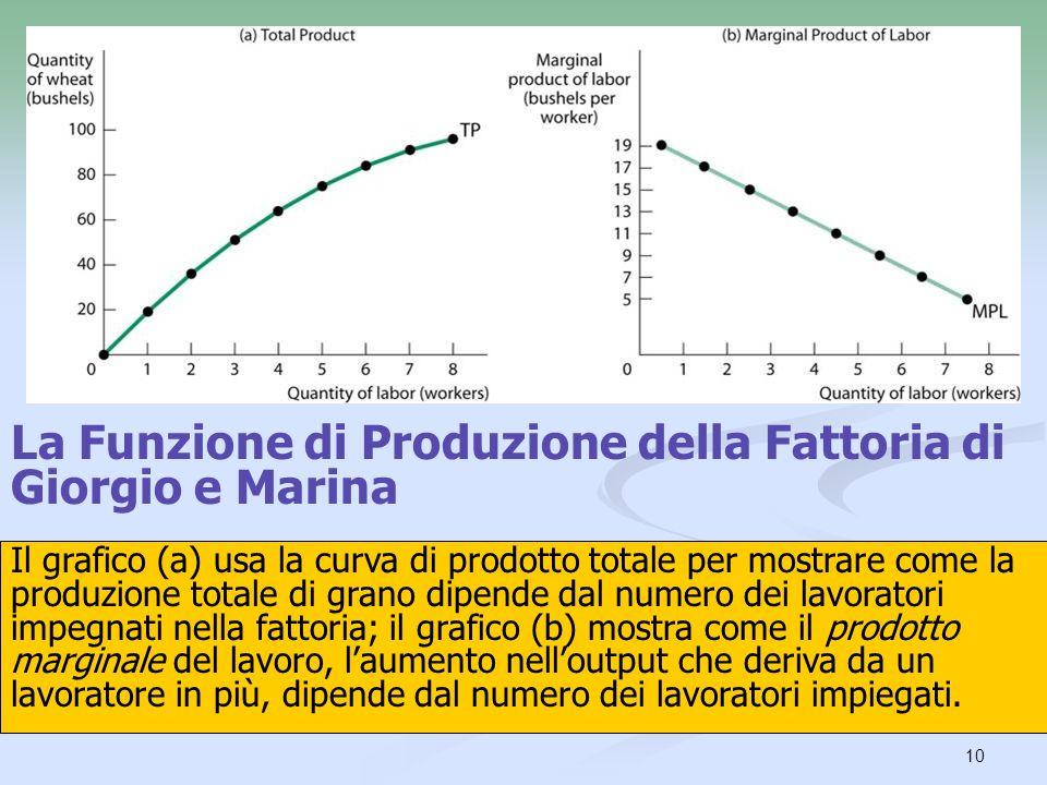 La Funzione di Produzione della Fattoria di Giorgio e Marina