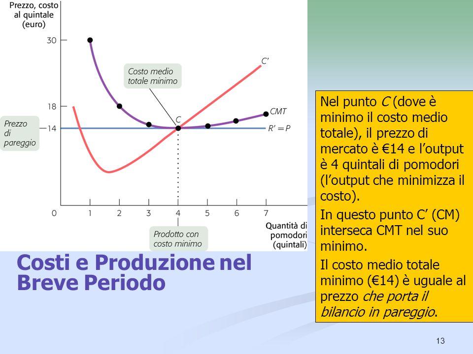 Costi e Produzione nel Breve Periodo