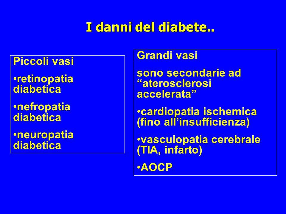 I danni del diabete.. Grandi vasi Piccoli vasi