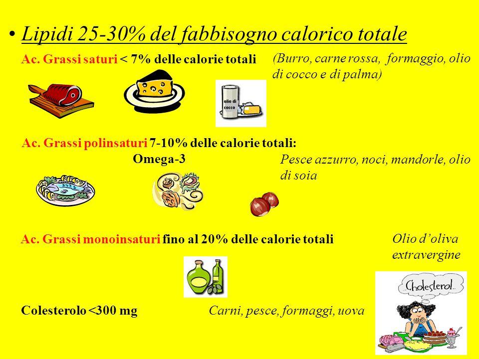 Lipidi 25-30% del fabbisogno calorico totale