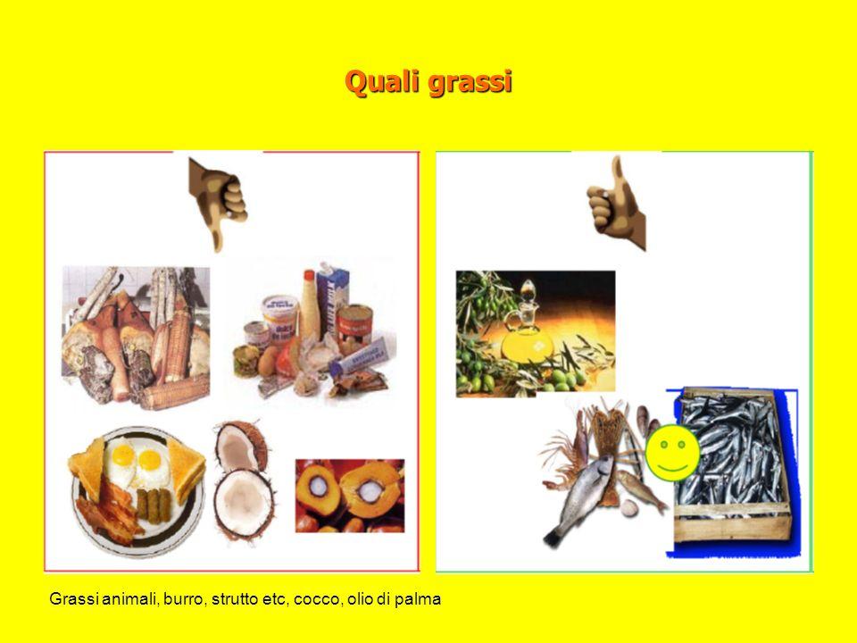 Quali grassi Grassi animali, burro, strutto etc, cocco, olio di palma
