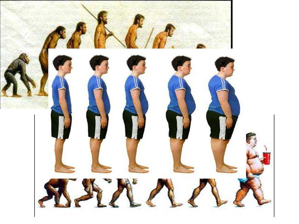 Per cui da un parte l'obesità dilaga dall'altra la sedentarietà contriubuisce a peggiorare la situazione anche negli adolescenti