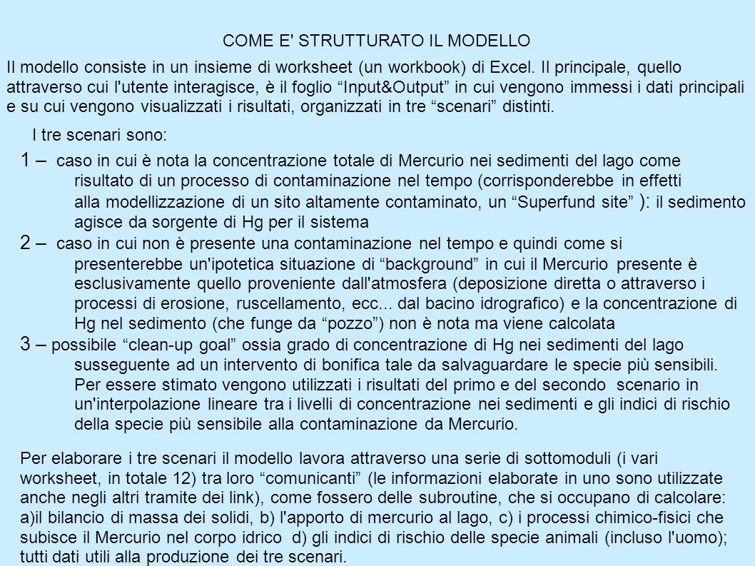 COME E STRUTTURATO IL MODELLO