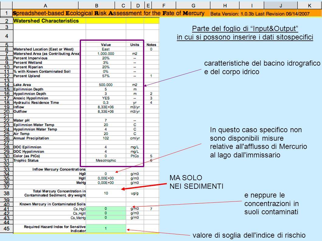 Parte del foglio di Input&Output