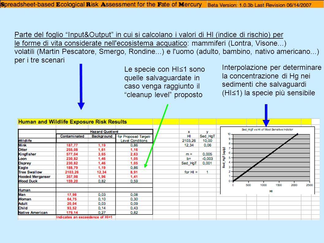 Parte del foglio Input&Output in cui si calcolano i valori di HI (indice di rischio) per