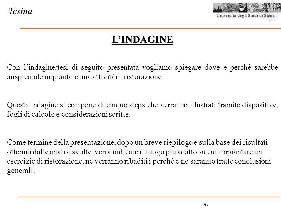 Tesina L'INDAGINE.