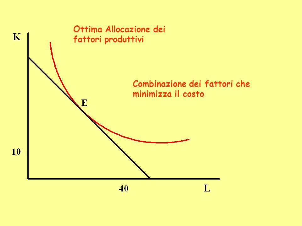 Ottima Allocazione dei fattori produttivi