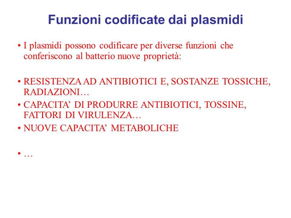 Funzioni codificate dai plasmidi