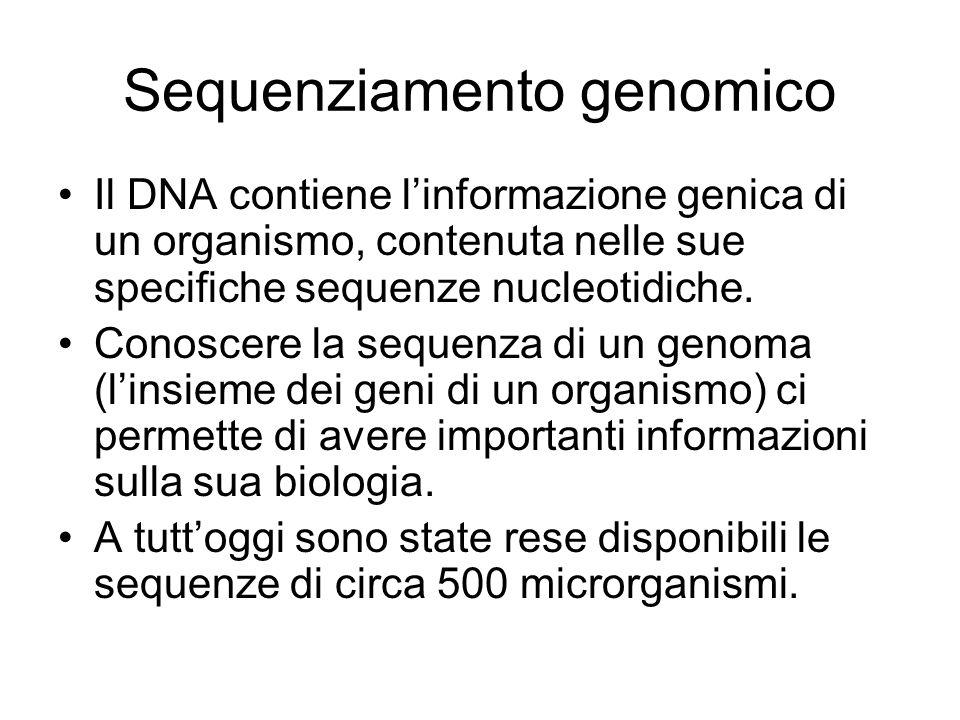 Sequenziamento genomico