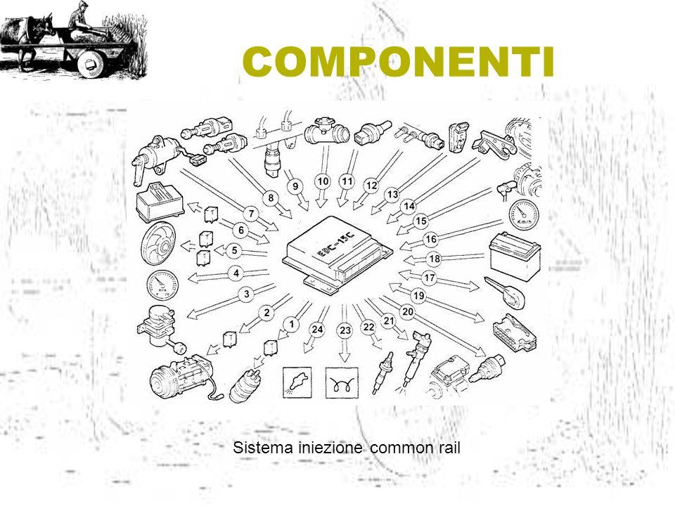 COMPONENTI Sistema iniezione common rail