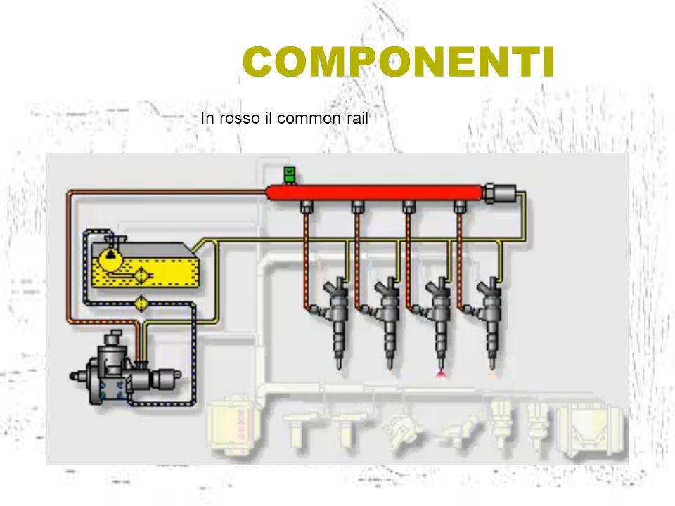 COMPONENTI In rosso il common rail
