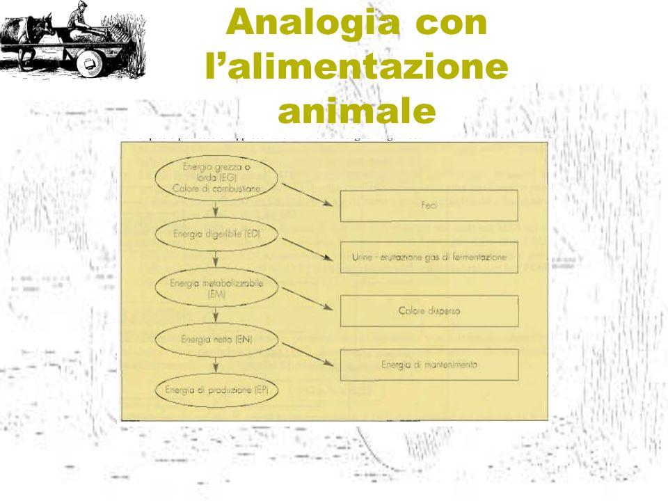 Analogia con l'alimentazione animale