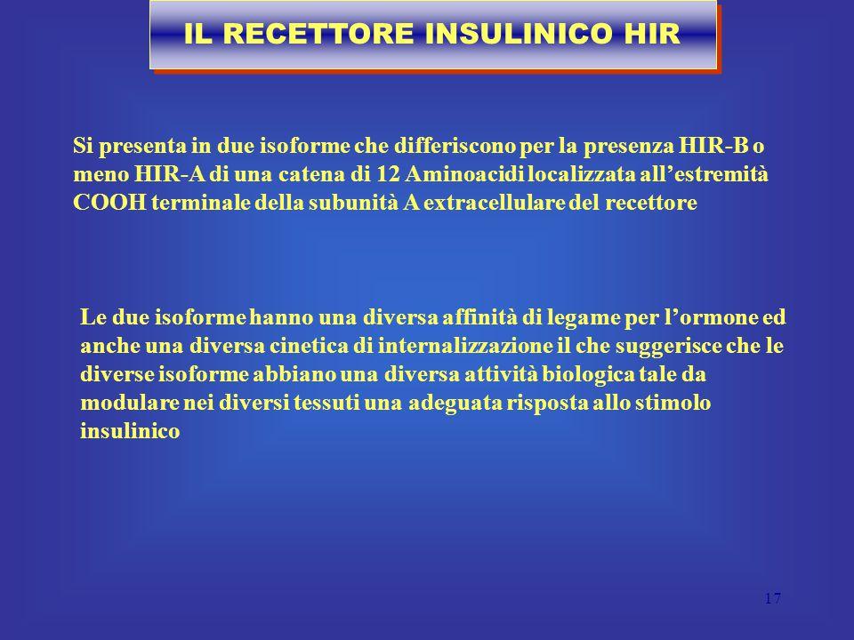 IL RECETTORE INSULINICO HIR
