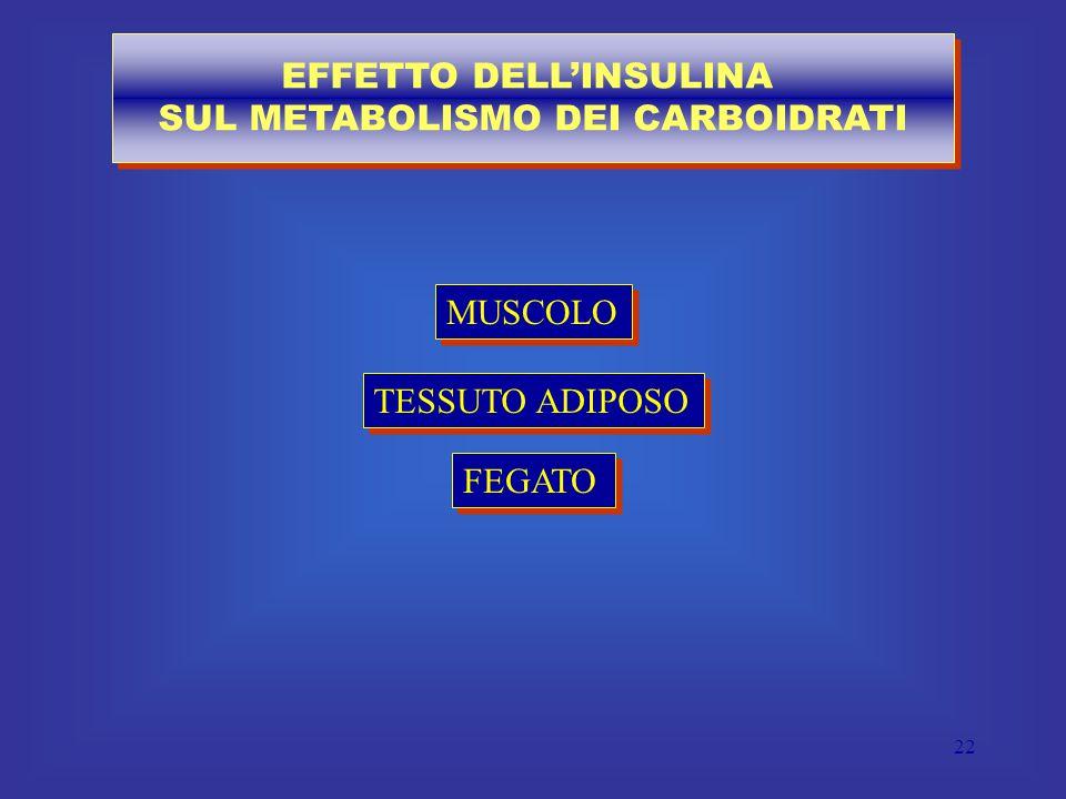 EFFETTO DELL'INSULINA SUL METABOLISMO DEI CARBOIDRATI
