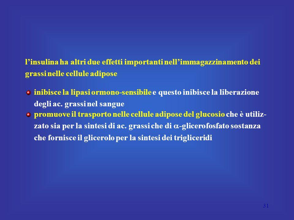 l'insulina ha altri due effetti importanti nell'immagazzinamento dei grassi nelle cellule adipose