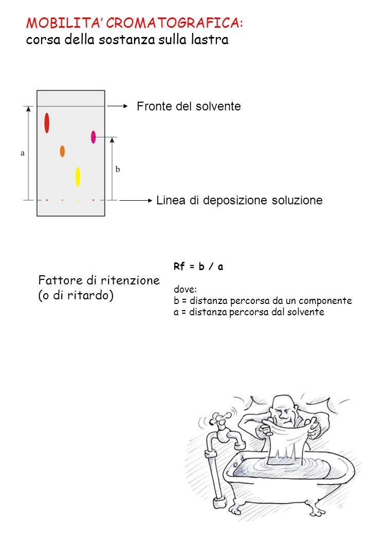 MOBILITA' CROMATOGRAFICA: corsa della sostanza sulla lastra