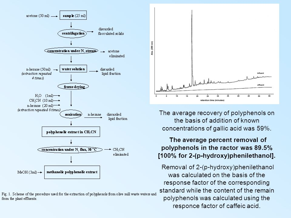 The average recovery of polyphenols on the basis of addition of known concentrations of gallic acid was 59%.
