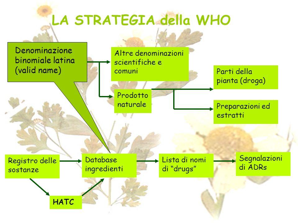 LA STRATEGIA della WHO Denominazione binomiale latina (valid name)