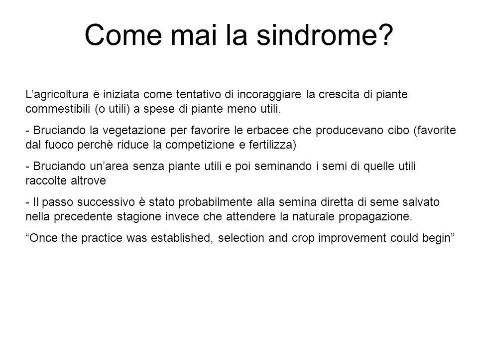 Come mai la sindrome