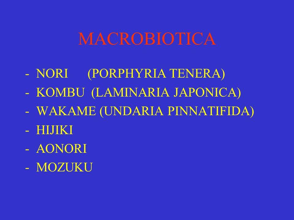 MACROBIOTICA NORI (PORPHYRIA TENERA) KOMBU (LAMINARIA JAPONICA)