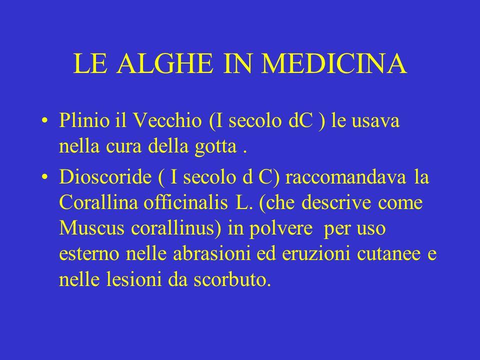 LE ALGHE IN MEDICINA Plinio il Vecchio (I secolo dC ) le usava nella cura della gotta .
