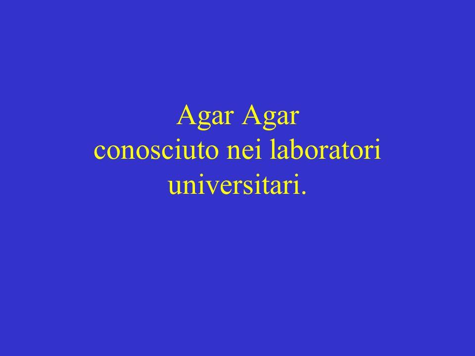 Agar Agar conosciuto nei laboratori universitari.