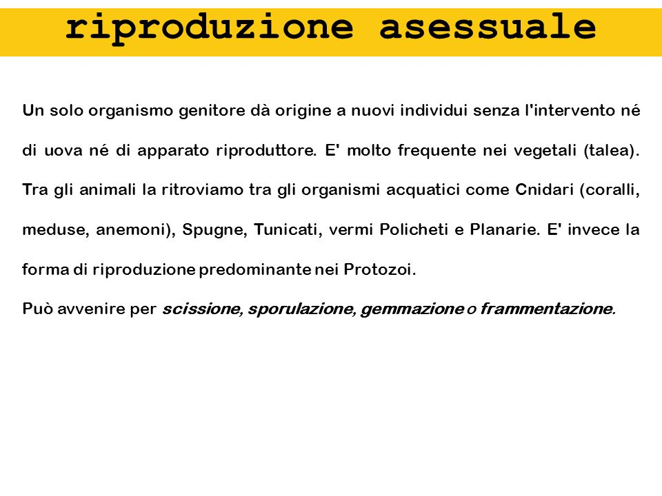 riproduzione asessuale