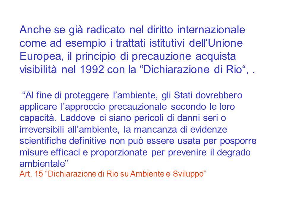 Anche se già radicato nel diritto internazionale come ad esempio i trattati istitutivi dell'Unione Europea, il principio di precauzione acquista visibilità nel 1992 con la Dichiarazione di Rio , .