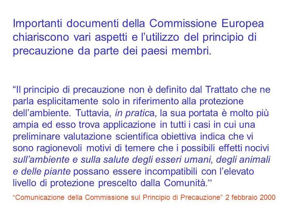 Importanti documenti della Commissione Europea chiariscono vari aspetti e l'utilizzo del principio di precauzione da parte dei paesi membri.