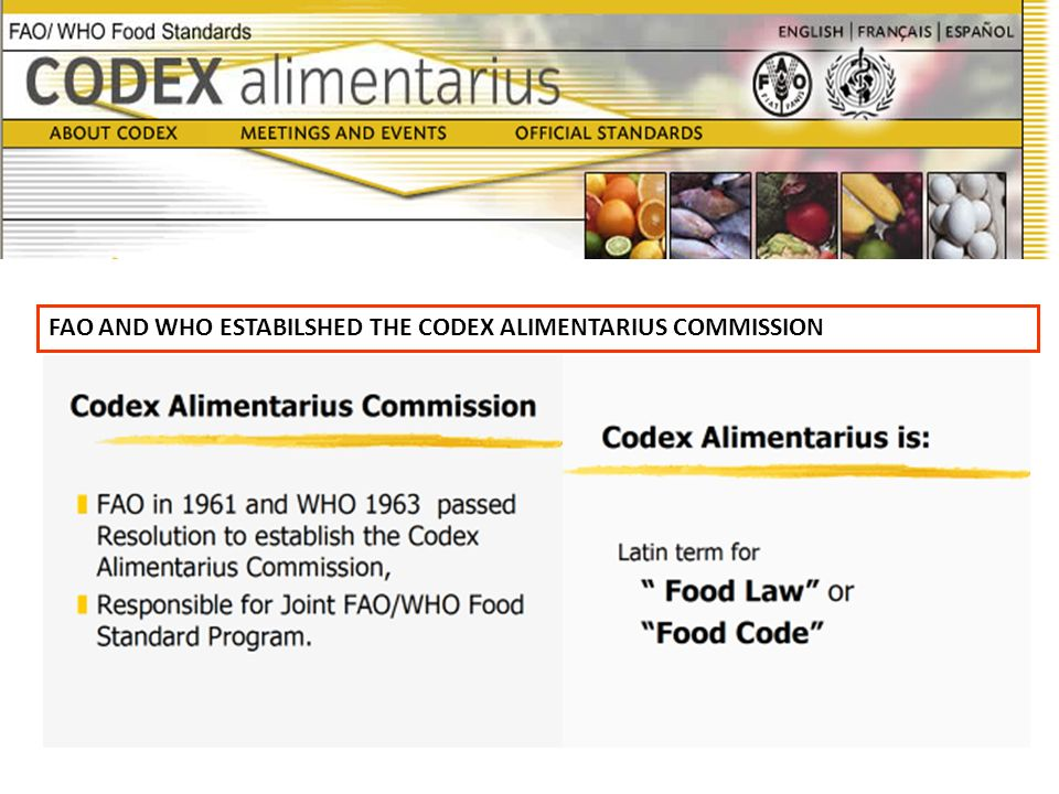 FAO AND WHO ESTABILSHED THE CODEX ALIMENTARIUS COMMISSION