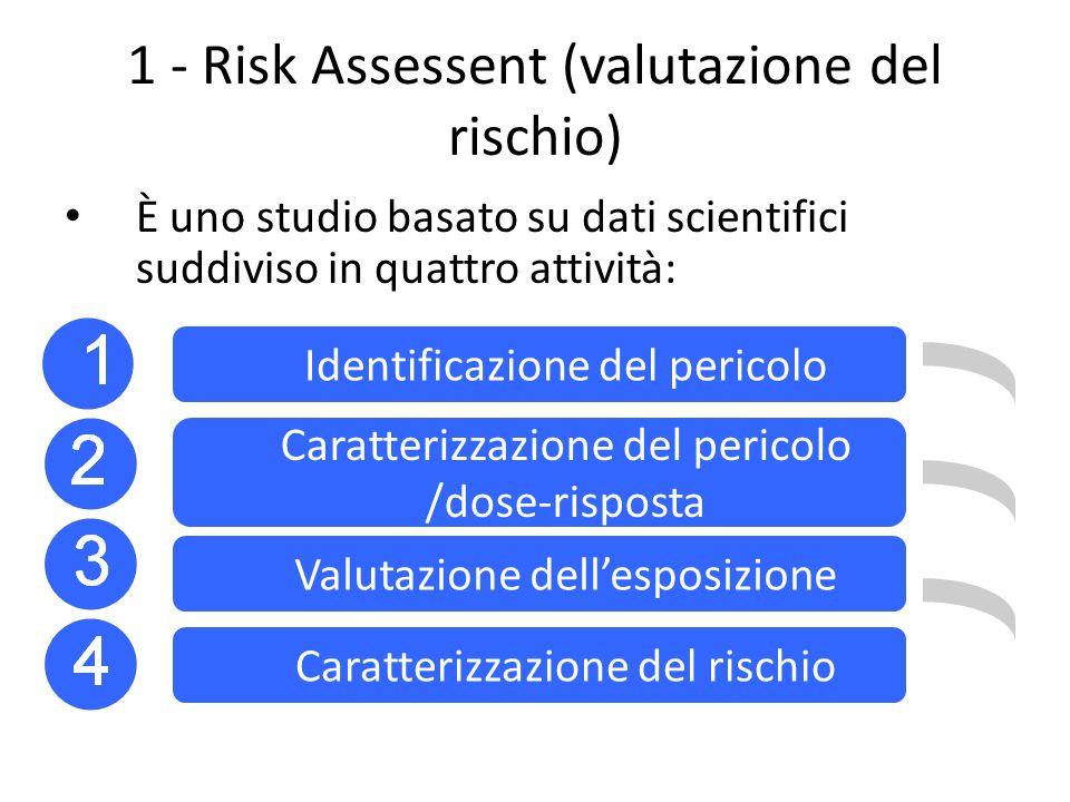 1 - Risk Assessent (valutazione del rischio)