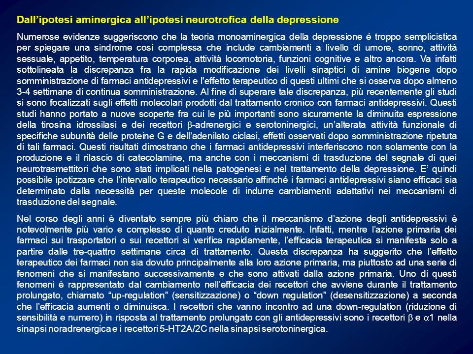 Dall'ipotesi aminergica all'ipotesi neurotrofica della depressione