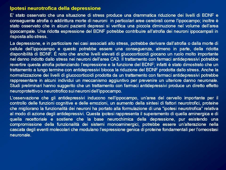 Ipotesi neurotrofica della depressione