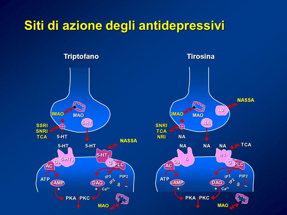 Siti di azione degli antidepressivi
