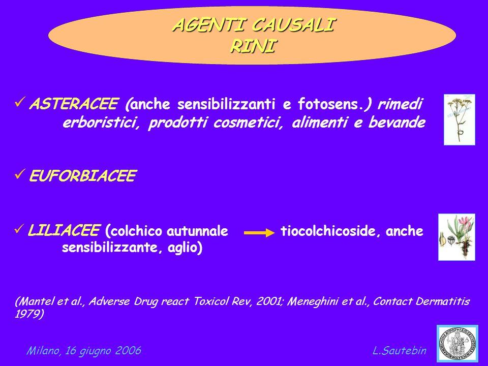 AGENTI CAUSALI RINI. ASTERACEE (anche sensibilizzanti e fotosens.) rimedi erboristici, prodotti cosmetici, alimenti e bevande.