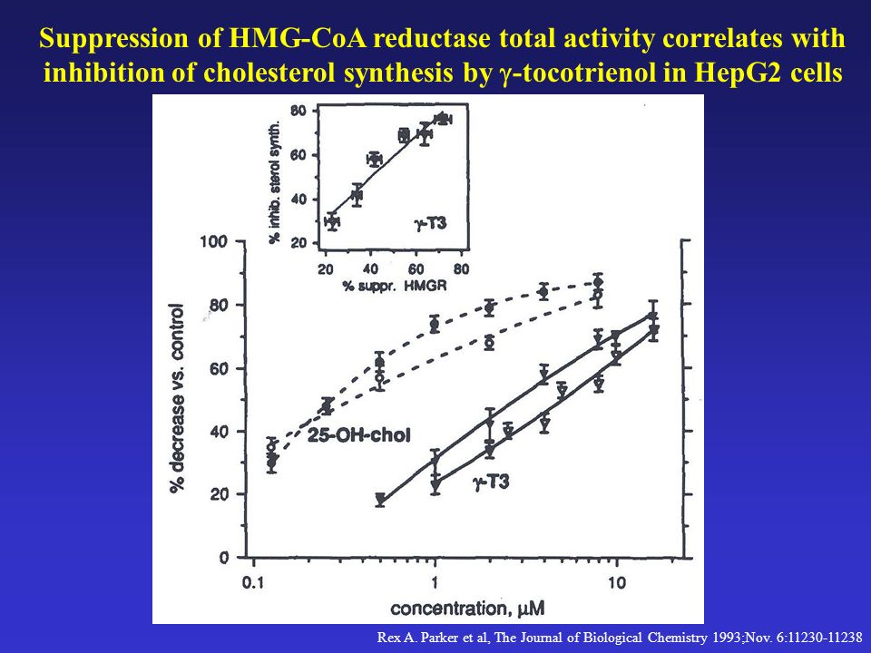 Suppression of HMG-CoA reductase total activity correlates with inhibition of cholesterol synthesis by g-tocotrienol in HepG2 cells