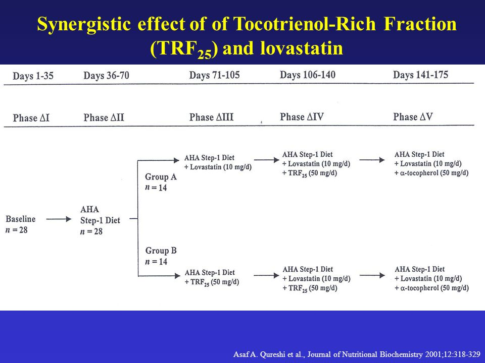 Synergistic effect of of Tocotrienol-Rich Fraction (TRF25) and lovastatin
