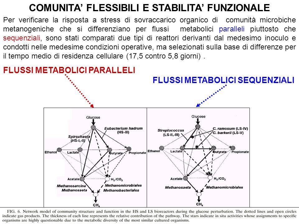 COMUNITA' FLESSIBILI E STABILITA' FUNZIONALE