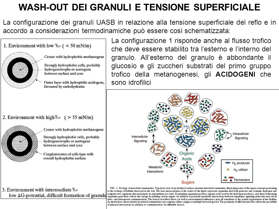 WASH-OUT DEI GRANULI E TENSIONE SUPERFICIALE