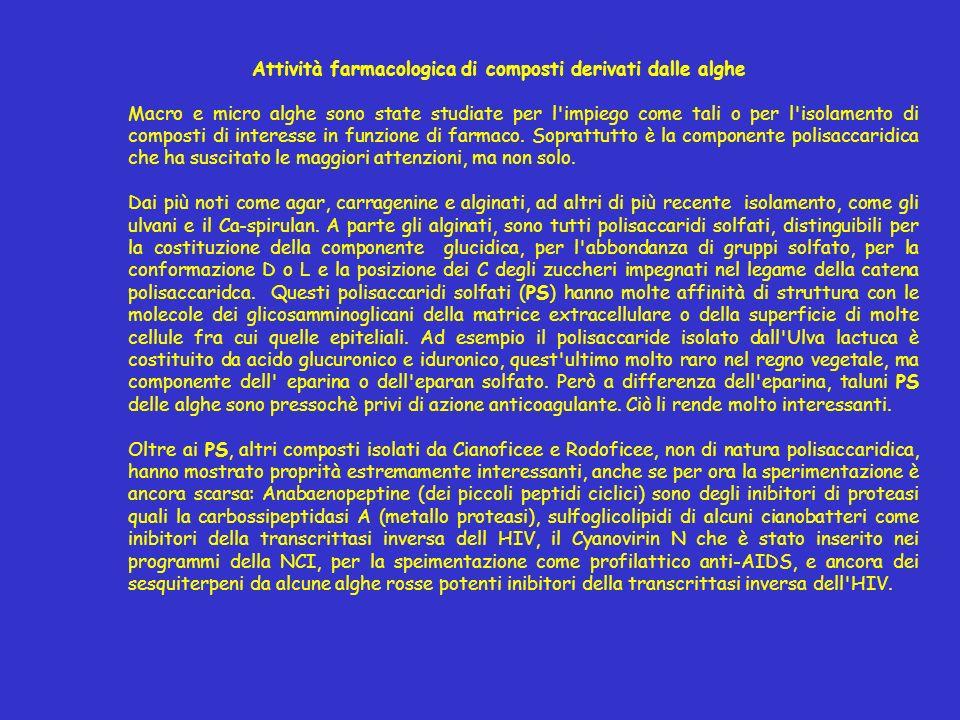Attività farmacologica di composti derivati dalle alghe