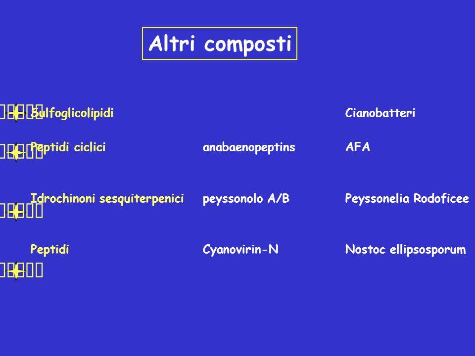 Altri composti  Sulfoglicolipidi Cianobatteri