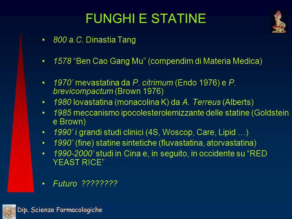FUNGHI E STATINE 800 a.C. Dinastia Tang
