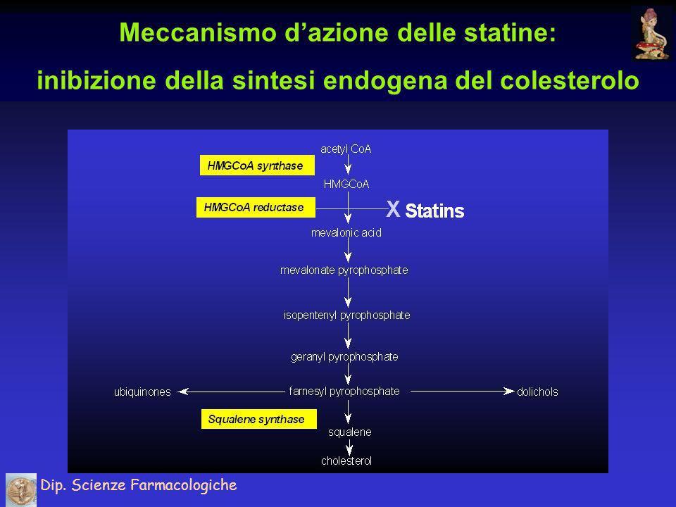 Meccanismo d'azione delle statine: