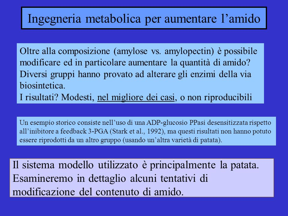 Ingegneria metabolica per aumentare l'amido